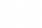 FILM FESTIVALS - 3 - SELECTIONS