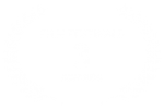 FILM FESTIVALS - 3 - AWARDS