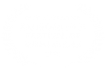 OFFICIAL SELECTION - KALAKARI FILM FESTIVAL BY RISHI NIKAM - 2020