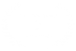 FILM FESTIVALS - 2 - SELECTIONS